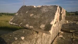 Visibili sulla superficie ormai grigiastra di questa vecchia chianca licheni e muschi stratificatisi nel tempo